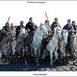 Camargue, sable de traditions ... par  - Saintes Maries de la Mer 13460 Bouches-du-Rhône Provence France