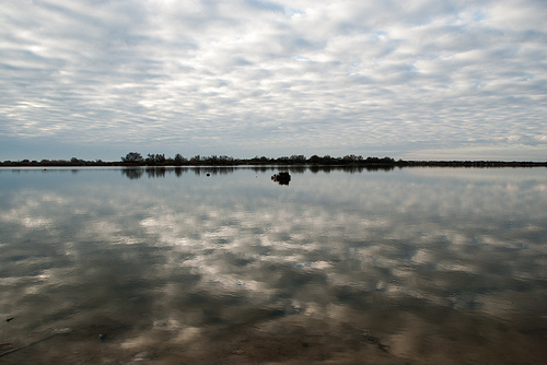 Camargue - étang et infinité par _atram_