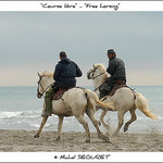 Course libre sur la plage / Free horsing by  - Saintes Maries de la Mer 13460 Bouches-du-Rh&ocirc;ne Provence France