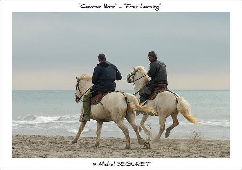 Course libre sur la plage / Free horsing by Michel Seguret