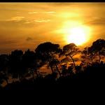 Le soleil se cache derrière les pins par Patchok34 - St. Antonin sur Bayon 13100 Bouches-du-Rhône Provence France