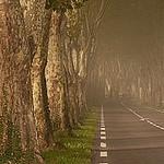 St. Remy Road par Robert Abramson for IzoneVision - St. Rémy de Provence 13210 Bouches-du-Rhône Provence France