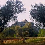 Olive Grove and Les Alpilles by wanderingYew2 - St. Rémy de Provence 13210 Bouches-du-Rhône Provence France