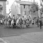 Bull Run at St Remy-de-Provence par Arpita Basu - St. Rémy de Provence 13210 Bouches-du-Rhône Provence France