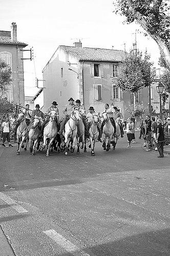 Bull Run at St Remy-de-Provence par Arpita Basu