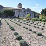 Prieuré de Saint-Paul de Mausole par salva1745 - St. Rémy de Provence 13210 Bouches-du-Rhône Provence France