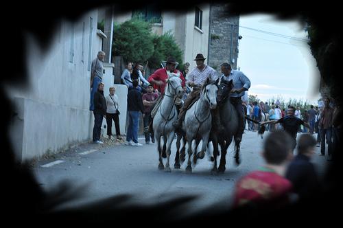 Bandido : le retour des taureaux by salva1745