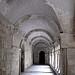 Le cloître du Monastere de Saint Paul de Mausole by lepustimidus - St. Rémy de Provence 13210 Bouches-du-Rhône Provence France