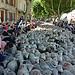 30ème Fête de la Transhumance par salva1745 - St. Rémy de Provence 13210 Bouches-du-Rhône Provence France