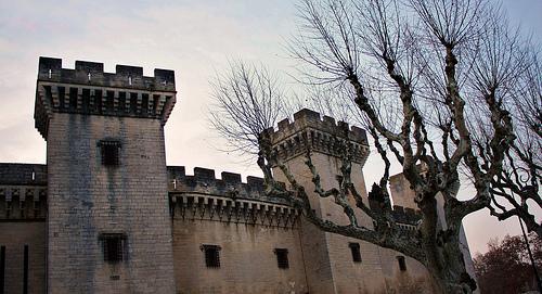 Le château du roi René à Tarascon par Cilions