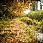 Autumn perspective in Tarsacon by  - Tarascon 13150 Bouches-du-Rhône Provence France