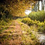 Autumn perspective in Tarsacon by  - Tarascon 13150 Bouches-du-Rhône Provence France