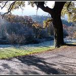 Givre sur le sol, l'avancement de brouillard, provence en hiver par J@nine - Vauvenargues 13126 Bouches-du-Rhône Provence France