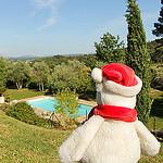 Le Mas du Grand Pin (piscine) - Ventabren par Meteorry - Ventabren 13122 Bouches-du-Rhône Provence France