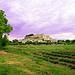 Arrivée à Grignan par Thierry62 - Grignan 26230 Drôme Provence France