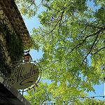 L'absinthe, c'est l'heure de l'apéro. par Tinou61 - La Garde-Adhémar 26700 Drôme Provence France