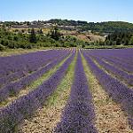 Montbrun les Bains et sa région (26) par  - Montbrun les Bains 26570 Drôme Provence France