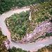 Vue plongeante sur les Gorges du Verdon par Truffle Jam - Castellane 04120 Alpes-de-Haute-Provence Provence France