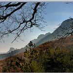 Pentes boisées - Sainte-Jalle by  -   Drôme Provence France