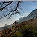 Pentes boisées - Sainte-Jalle par Charlottess -   Drôme Provence France
