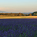 Paysage coloré de Réauville en Drôme provençale by sergegoujon - Réauville 26230 Drôme Provence France