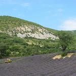 Drôme provençale by k.deperrois -   Drôme Provence France