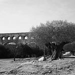 Aqueduc : Pont du Gard de Remoulins by Cilions - Vers-Pont-du-Gard 30210 Gard Provence France