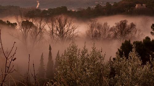 Brume sur l'Alzon par franc34