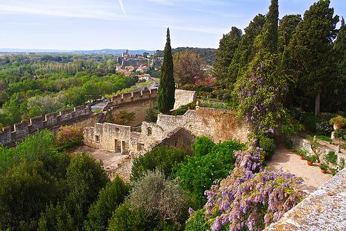 Villeneuve-lès-Avignon by avz173