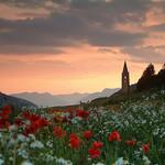 Ceillac, Sainte Cecile par Laurence_ - Ceillac 05600 Hautes-Alpes Provence France