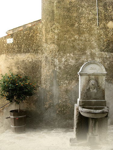 Fontaine 1833 - Bormes-Les-Mimosas by funkyflamenca