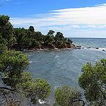 La côte varoise et sauvage à Bormes les mimosas by Tinou61 - Bormes les Mimosas 83230 Var Provence France