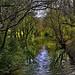 1 mois plus l'Argens ... Var par Charlottess - Brue Auriac 83119 Var Provence France