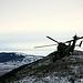 Exercice militaire avec LeTigre par jose nicolas photographe - Plan de Canjuers 83998 Var Provence France