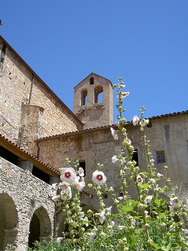Draguignan - Dracenie par Dracénie Tourisme Var Provence