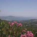 Côte d'Azur : Golfe de Saint Tropez par cpqs - Gassin 83580 Var Provence France