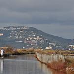 Route du sel à Giens par SUZY.M 83 - Giens 83400 Var Provence France