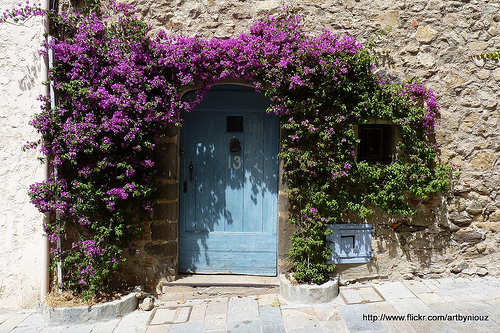 Porte ancienne fleurie par Niouz
