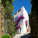 The white house in Grimaud by Belles Images by Sandra A. - Grimaud 83310 Var Provence France