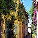 Ruelle à Grimaud par Morpheus © Schaagen - Grimaud 83310 Var Provence France