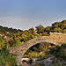 Ruines du Pont-aqueduc by Belles Images by Sandra A. - Grimaud 83310 Var Provence France