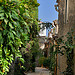 Verdure - Grimaud by Belles Images by Sandra A. - Grimaud 83310 Var Provence France