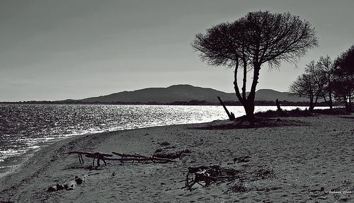 Plage de sable à Hyères by Babaou