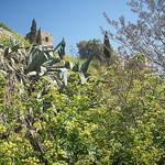 Le Rocher. La Garde, Var. par Only Tradition - La Garde 83130 Var Provence France