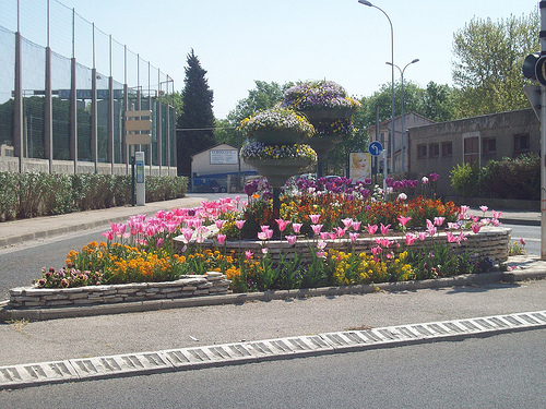 Massif floral. La Garde, Var. by Only Tradition