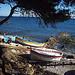 Bateaux en bord de mer, Var. by Only Tradition - La Seyne sur Mer 83500 Var Provence France