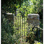 Jardin à l'abandon by Tinou61 - Le Castellet 83330 Var Provence France