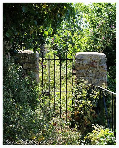 Jardin à l'abandon par Tinou61