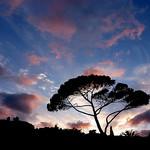 Plage de Saint-Clair par MrLo37 - Le Lavandou 83980 Var Provence France