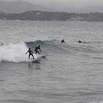Surf sur la côte d'azur par SUZY.M 83 - Le Pradet 83220 Var Provence France